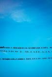 Pássaros em fios fotografia de stock royalty free