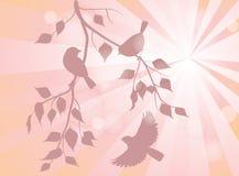 Pássaros em ramos Fotografia de Stock Royalty Free