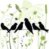 Pássaros em um fio Imagens de Stock