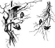 Pássaros em uma árvore Fotos de Stock
