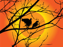 Pássaros em uma árvore no por do sol Imagens de Stock Royalty Free