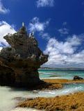 Pássaros empoleirados na rocha Imagem de Stock Royalty Free