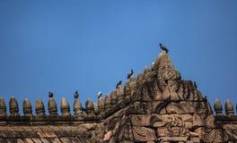 Pássaros empoleirados sobre o castelo Imagem de Stock