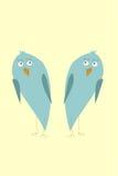 Pássaros engraçados do quivi Foto de Stock Royalty Free