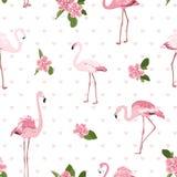 Pássaros exóticos cor-de-rosa do flamingo, flores tropicais do camelia, corações verdes das folhas no fundo branco Teste padrão s ilustração royalty free