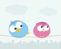 Pássaros flertando Imagem de Stock Royalty Free