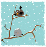 Pássaros na árvore. Imagens de Stock