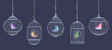 Pássaros nas gaiolas de prata ilustração stock
