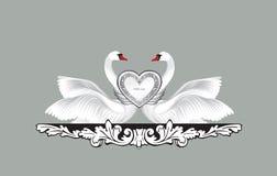 Pássaros no amor com decoração floral Pares de silhueta das cisnes Fotografia de Stock Royalty Free