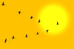 Pássaros no clássico Fotos de Stock