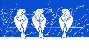 Pássaros no fio ilustração royalty free