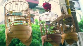 Pássaros prendidos da música para a venda nas gaiolas nas ruas do quarto velho do capital, Hanoi, Vietname vídeos de arquivo