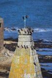 Pássaros pretos Imagem de Stock Royalty Free