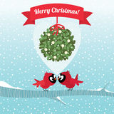 Pássaros que beijam sob um ramo do Natal do visco Imagem de Stock