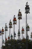 Pássaros que cantam contets Foto de Stock Royalty Free