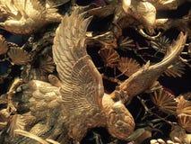 Pássaros que espalharam suas asas, fotografia de stock