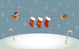 Pássaros que prendem peúgas do Natal Imagens de Stock