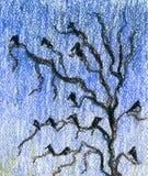 Pássaros que sentam-se em ramos contra o céu azul, gralhas ilustração stock