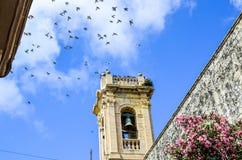 Pássaros que voam acima de uma torre de sino em Malta Imagens de Stock Royalty Free