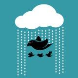 Pássaros que voam no céu quando chover Imagens de Stock Royalty Free