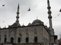 Pássaros que voam sobre a mesquita azul em Istambul, Turquia Fotos de Stock