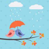Pássaros sob o guarda-chuva Imagens de Stock Royalty Free