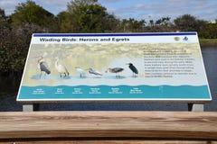 Pássaros vadeando: Sinal da identificação das garças-reais e dos Egrets Fotografia de Stock Royalty Free