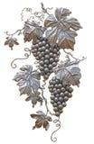 Pátina del oro de las uvas Foto de archivo