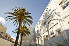 Pátio com as palmeiras no quarto histórico do alto de Bairro, Lisboa Portugal Fotos de Stock