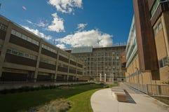 Pátio da universidade Imagem de Stock
