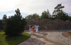Pátio do Paver do quintal com a lagoa no jardim Vista geral ajardinando do pátio do Paver do quintal Imagens de Stock Royalty Free
