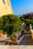 Pátio interior bonito do jardim com uma escadaria fora imagem de stock royalty free