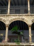 Pátio interno com planta Foto de Stock
