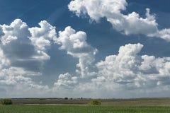 Pátria de Romênia - paisagem Imagem de Stock Royalty Free