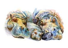 A pátria do hipopótamo que descansa no banco de rio Ilustração Royalty Free