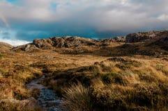 Pântano aumentado nas montanhas do norte de Escócia Imagem de Stock