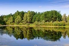 Pântano com reflexão na franja da floresta Fotografia de Stock Royalty Free