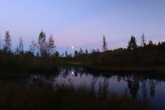 Pântano da floresta do outono da noite sob o luar Foto de Stock Royalty Free