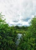 Pântano da floresta Nubla-se o céu Nuvens do outono fotografia de stock