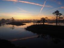 Pântano de Kakerdaja com as trilhas planas no céu Imagens de Stock