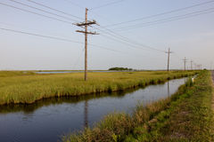 Pântano de Louisiana foto de stock royalty free