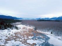 Pântano do Alasca congelado fotografia de stock