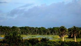 Pântano do rio com céu irritado Foto de Stock Royalty Free