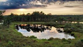 Pântano e nuvens no por do sol Fotos de Stock Royalty Free