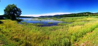Pântano em Lipenski, Boêmia, República Checa; Imagens de Stock