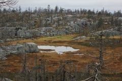 Pântano entre as rochas Imagem de Stock Royalty Free