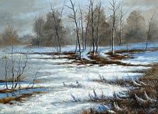 Pântano nebuloso, dia de inverno Fotos de Stock Royalty Free