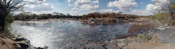 Pântano no Serengeti - vista panorâmico foto de stock