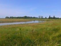 Pântanos de Kent Imagem de Stock