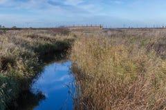 Pântanos de Rainham em um dia ensolarado com um córrego Fotografia de Stock